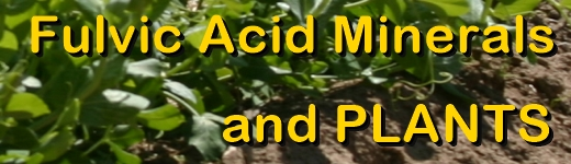 Ormus Minerals Fulvic Acid Minerals for PLANTS